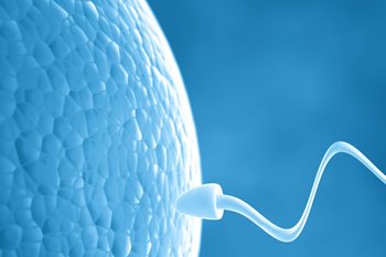 Information on IVF in English